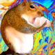 LazySquirrel
